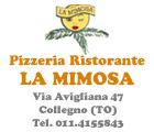 La Mimosa Pizzeria Collegno